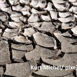 Kurt Michel/ pixelio