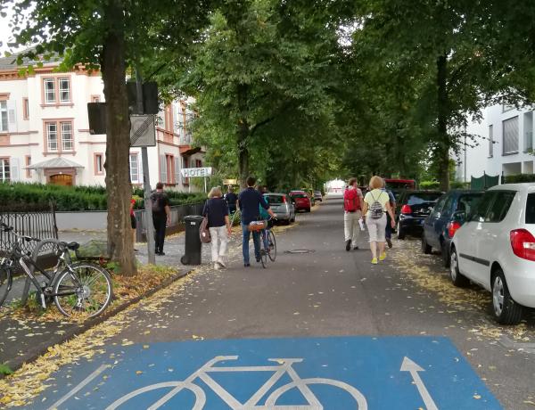 Klimaanpassungsspaziergang durch Freiburg