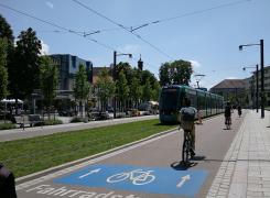 Cool Down statt Warm Up – Klimaspaziergang durch Freiburg