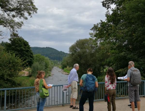 Klimaspaziergang durch Waldsee